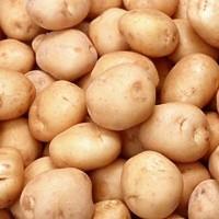 Russet potatoes (200 x 200)